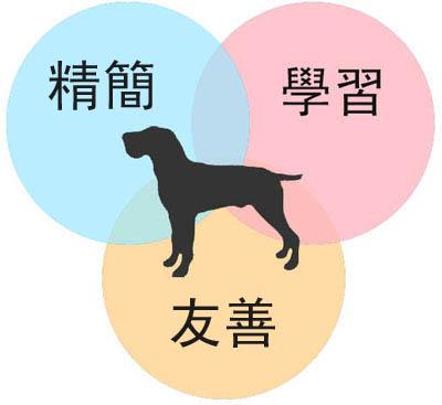 財報狗使命:精簡、友善、學習